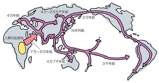 分子人類学と日本人の起源 (ポピュラーサイエンス) …